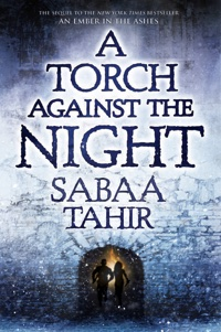 torch-against-night